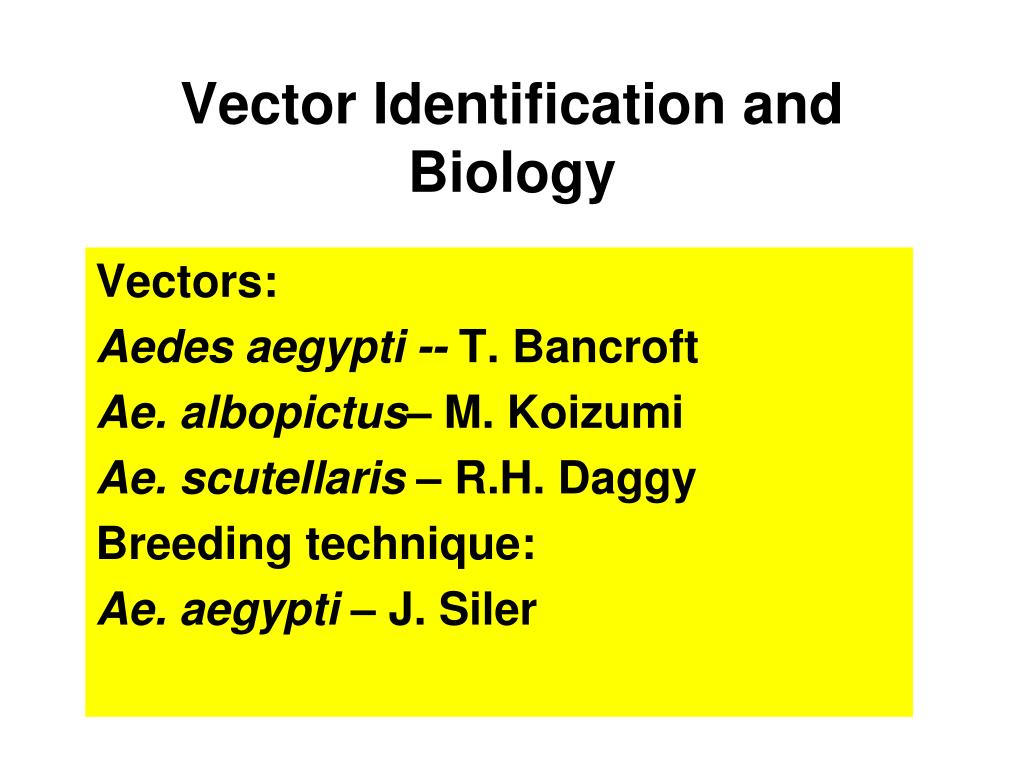 Vector Identification and Biology
