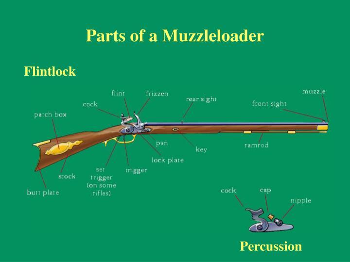 Parts of a Muzzleloader