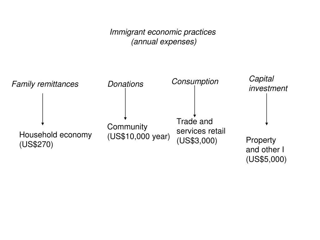 Immigrant economic practices