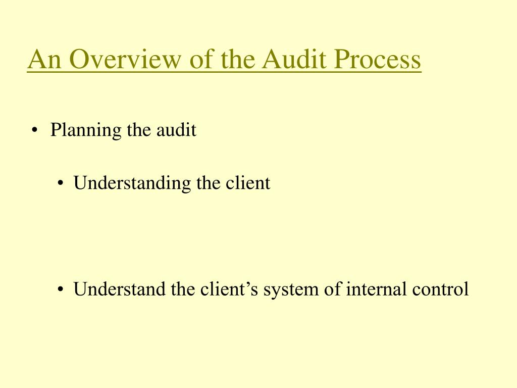 An Overview of the Audit Process