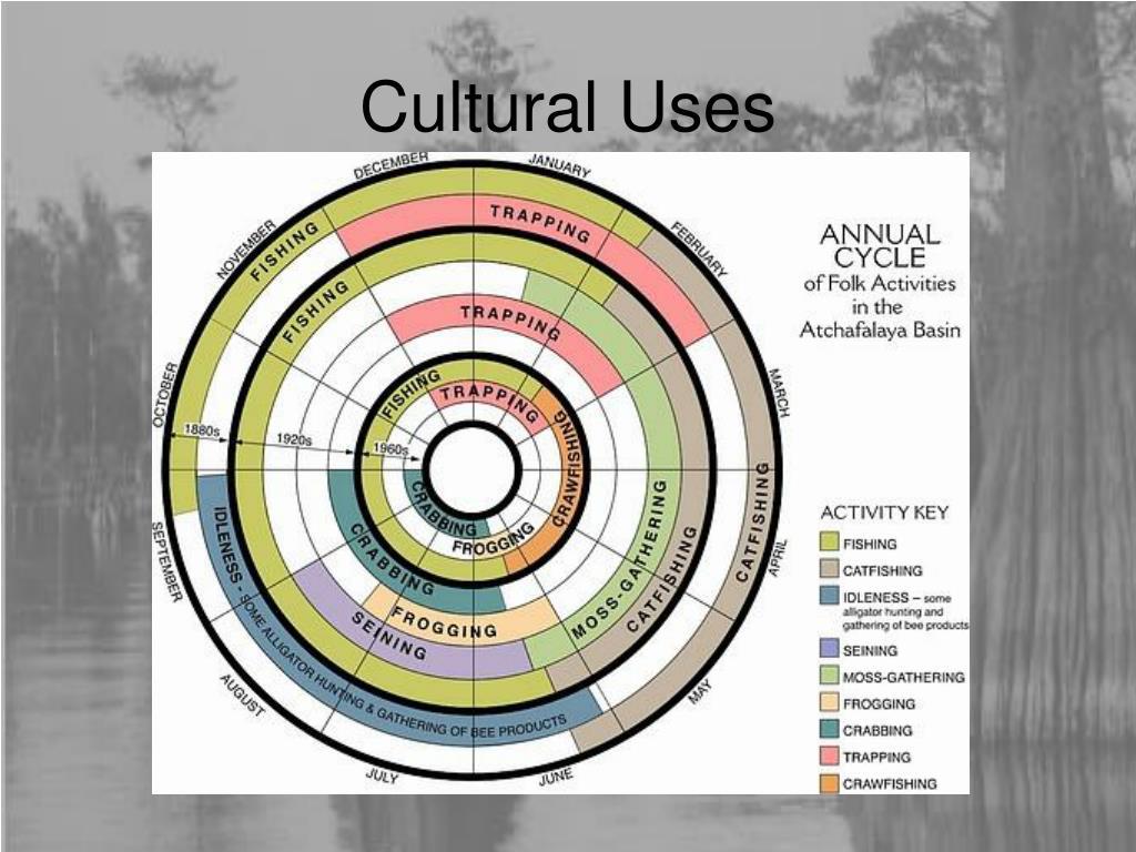 Cultural Uses
