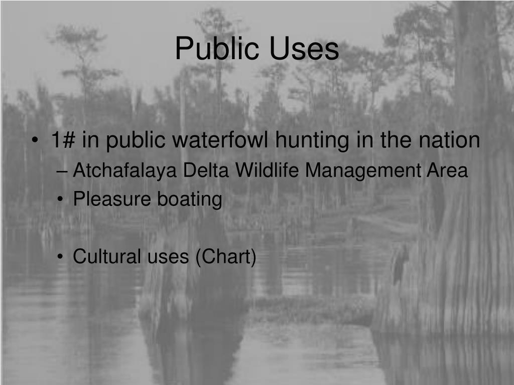 Public Uses