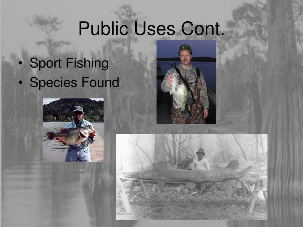 Public Uses Cont.