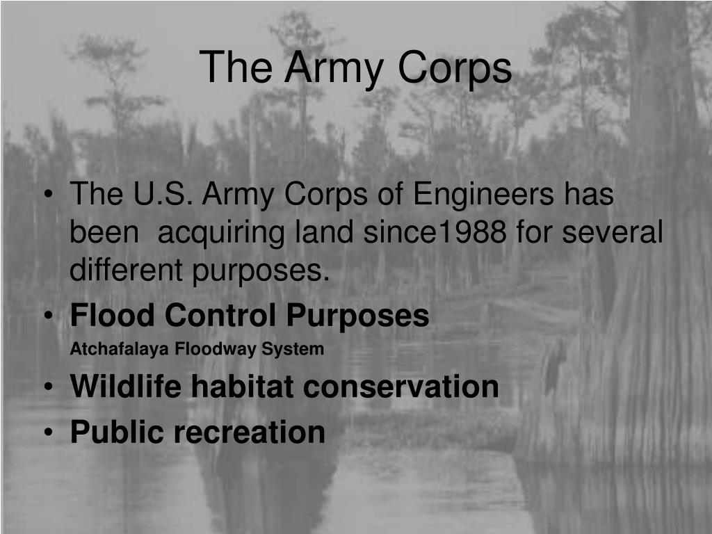The Army Corps