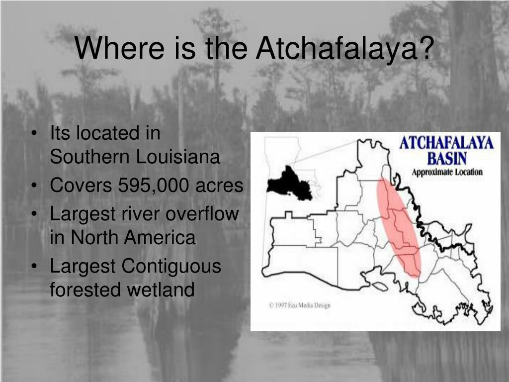 Where is the Atchafalaya?