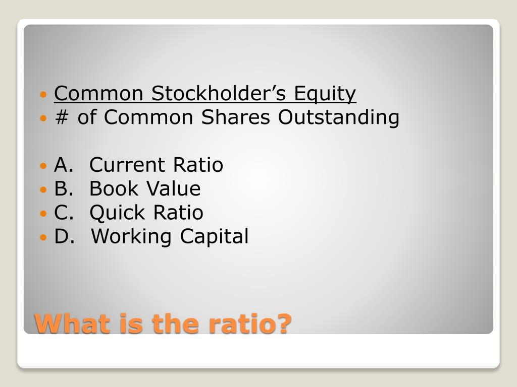Common Stockholder's Equity