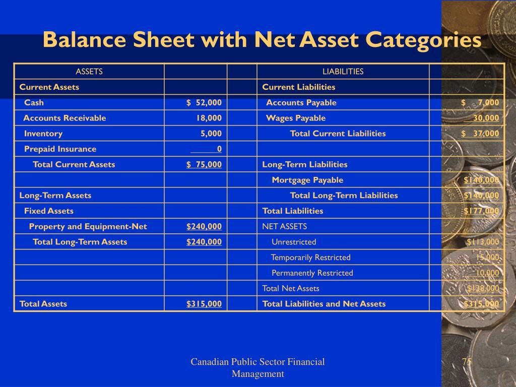Balance Sheet with Net Asset Categories