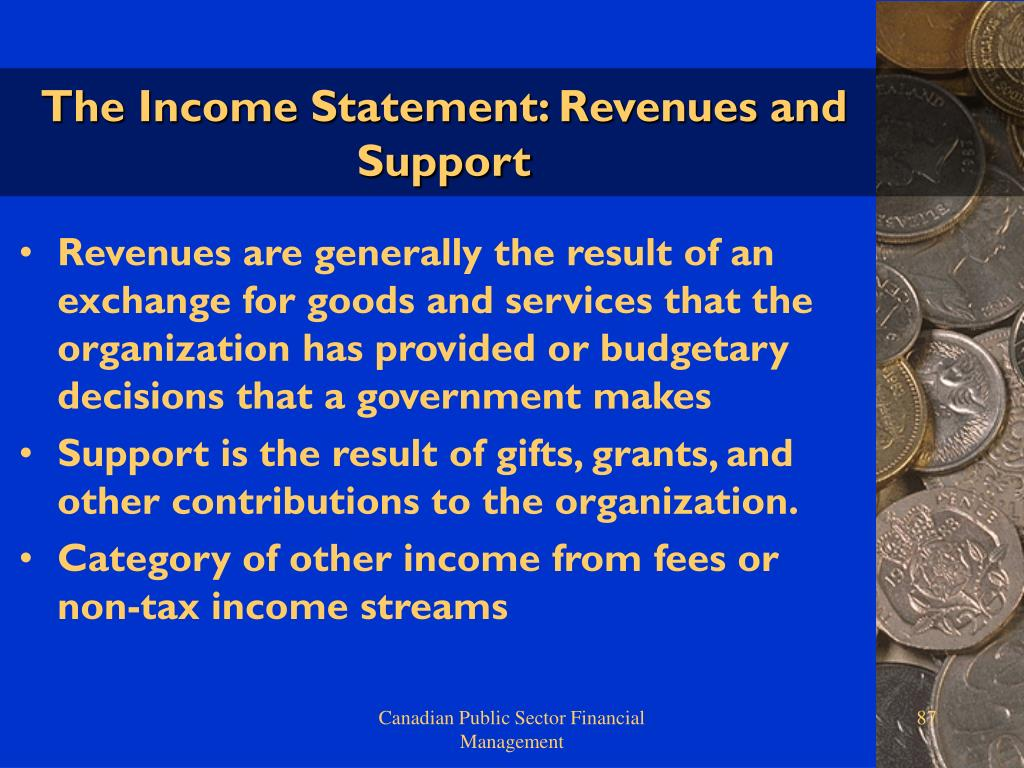 The Income Statement: Revenues and Support