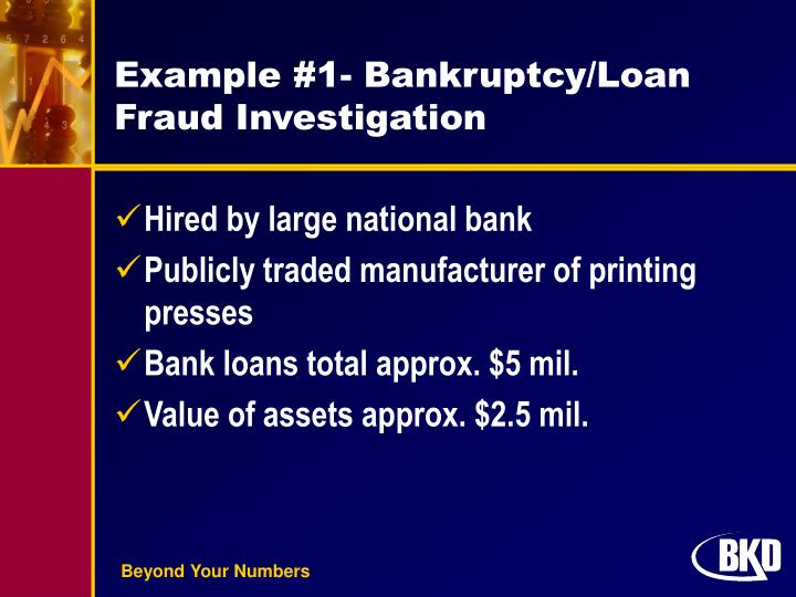 Example #1- Bankruptcy/Loan  Fraud Investigation