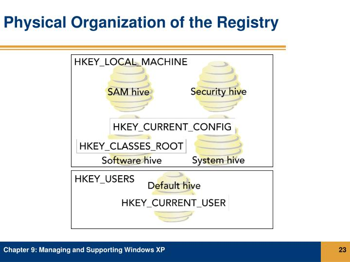 Physical Organization of the Registry