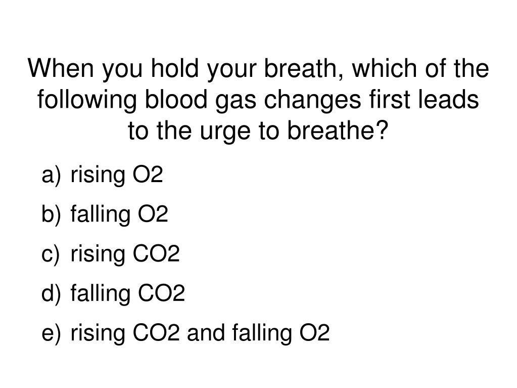 When you hold your breath, which of the following blood gas changes first leads to the urge to breathe?