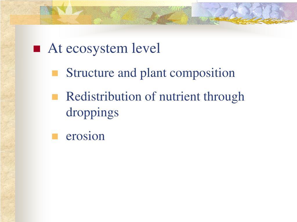 At ecosystem level