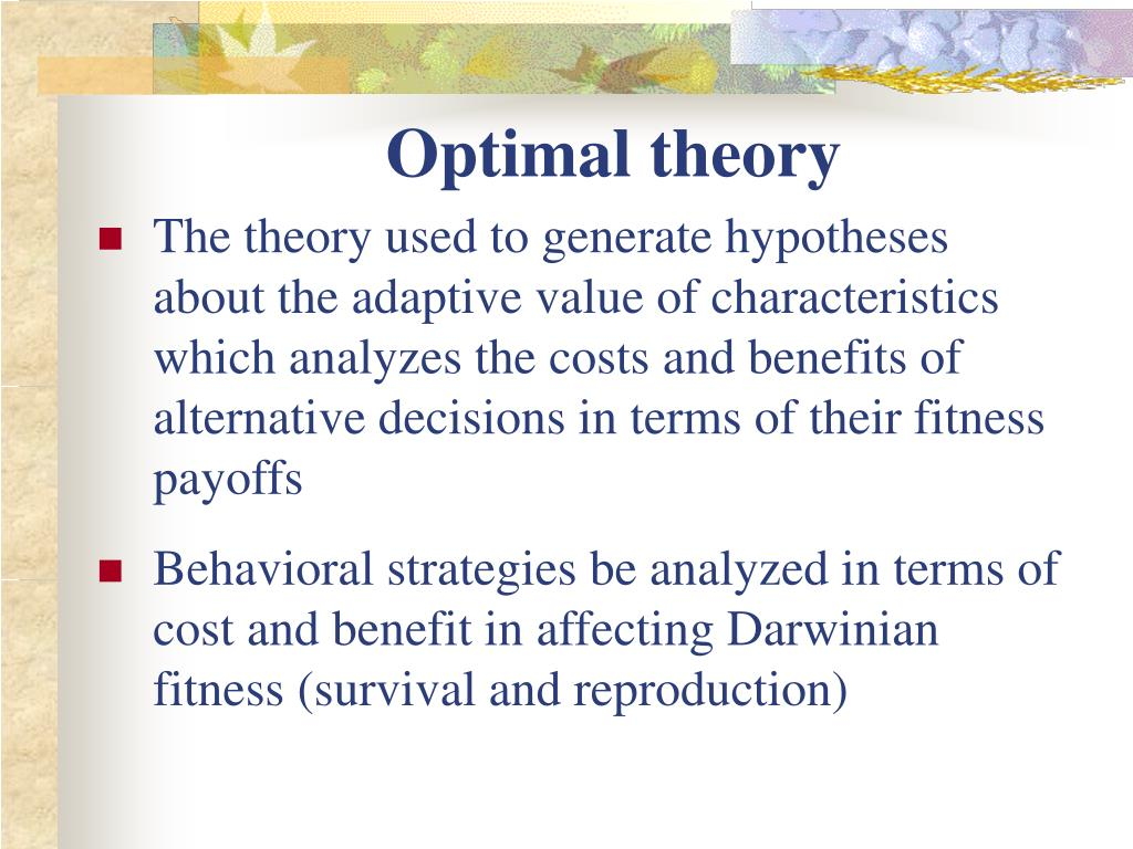 Optimal theory