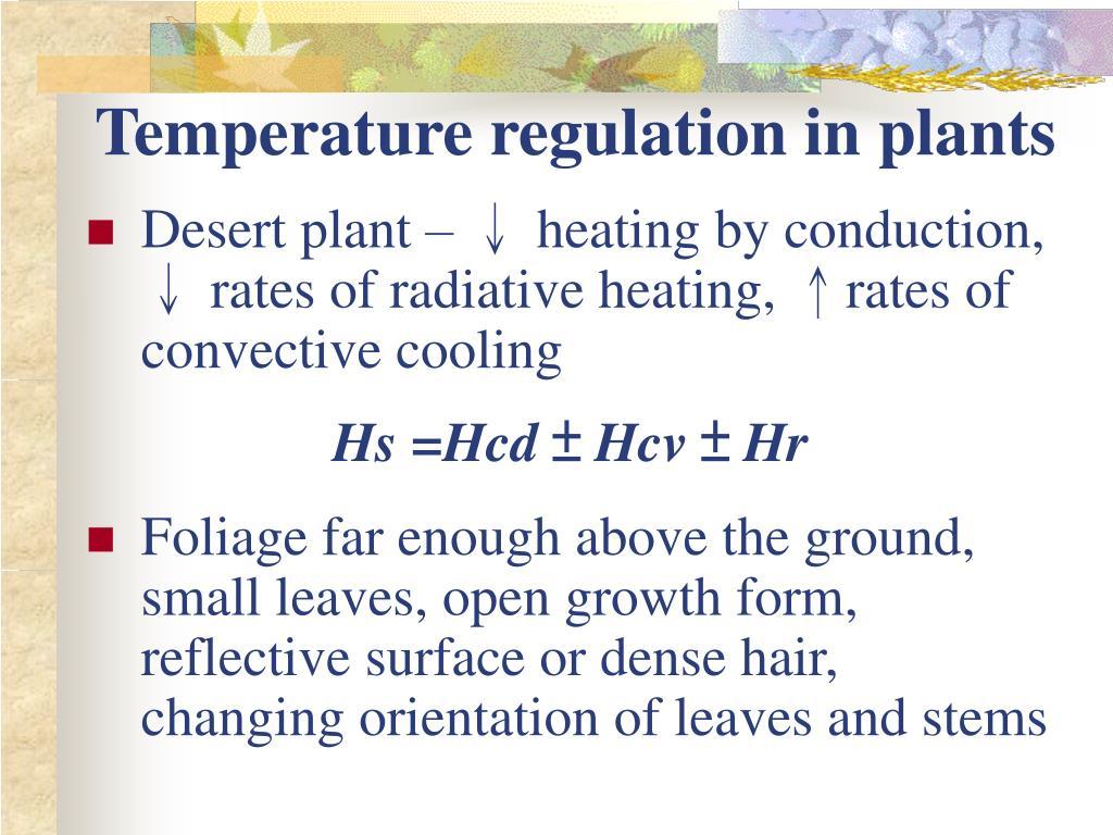 Temperature regulation in plants