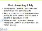 basic accounting tally18