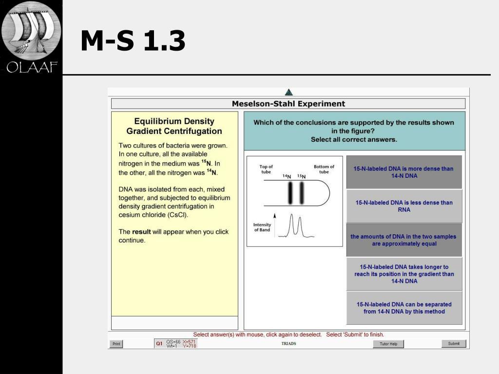 M-S 1.3