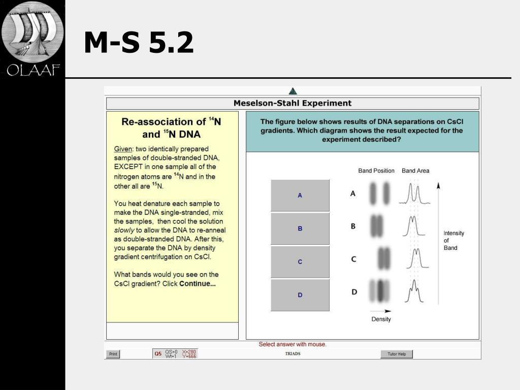 M-S 5.2