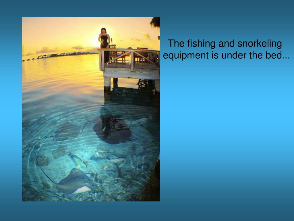 The fishing and snorkeling