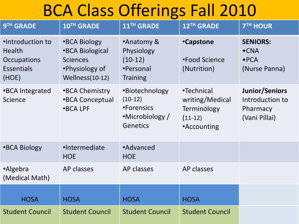 BCA Class Offerings Fall 2010