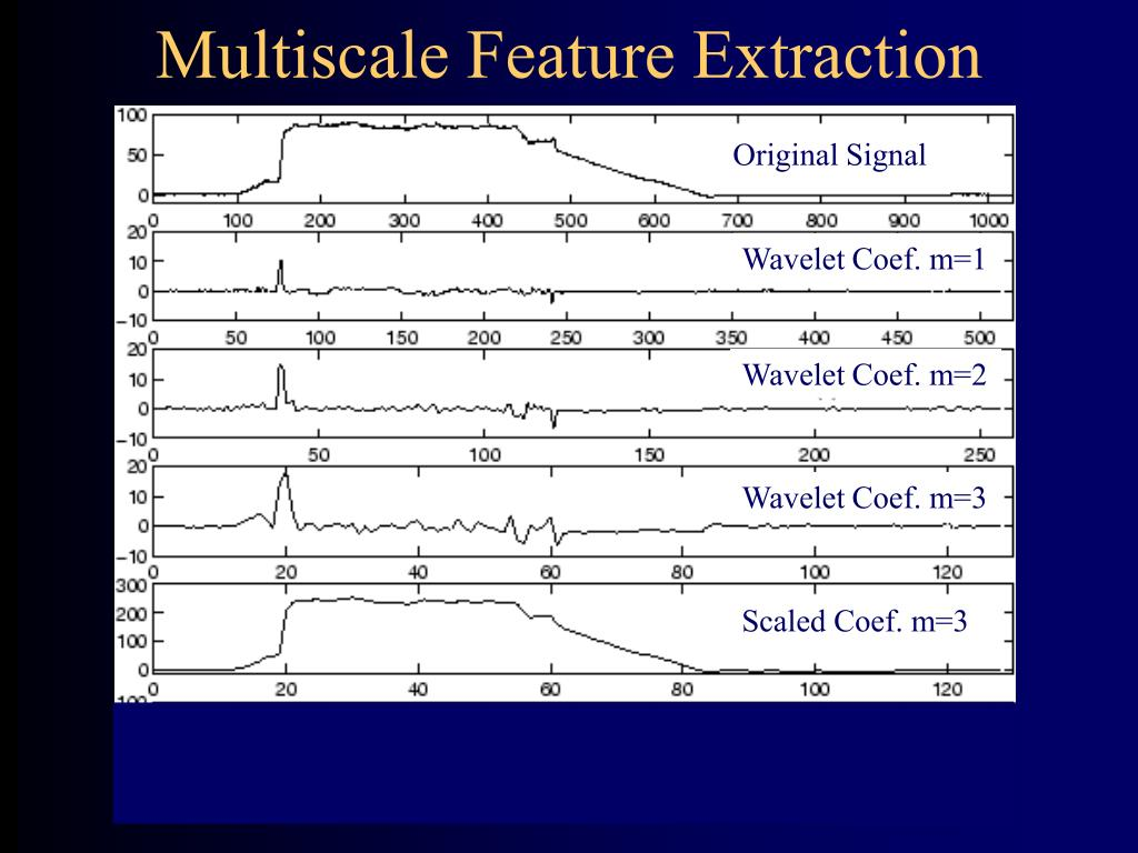 Multiscale Feature Extraction