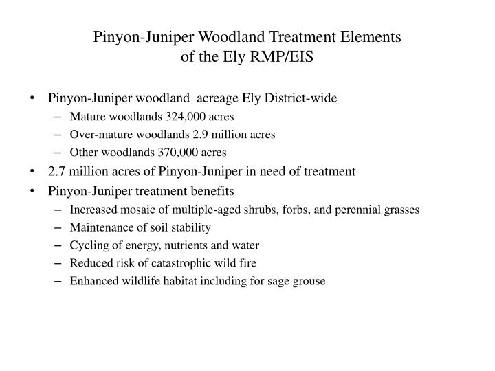 Pinyon juniper woodland treatment elements of the ely rmp eis