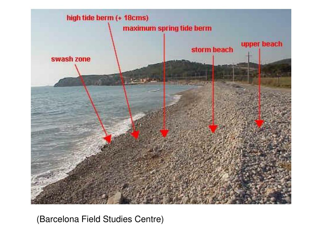 (Barcelona Field Studies Centre)
