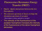fluorescence resonance energy transfer fret
