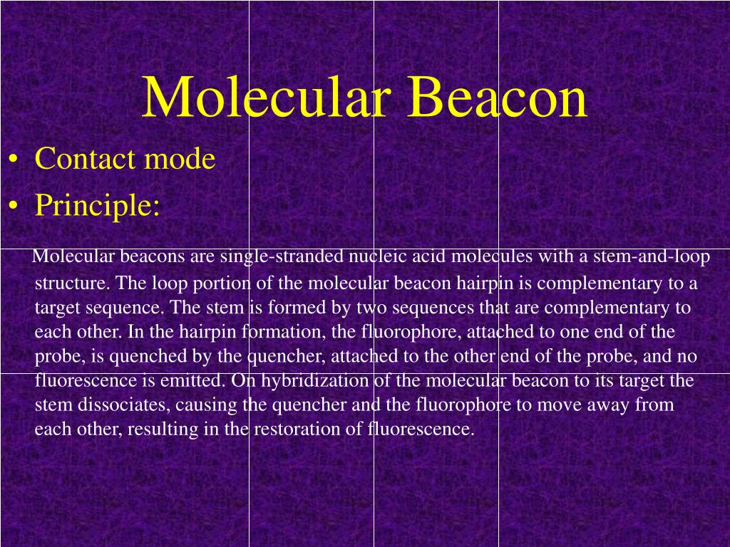 Molecular Beacon
