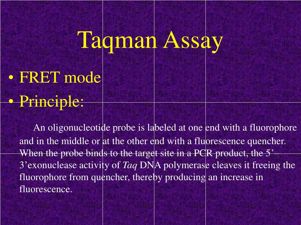 Taqman Assay