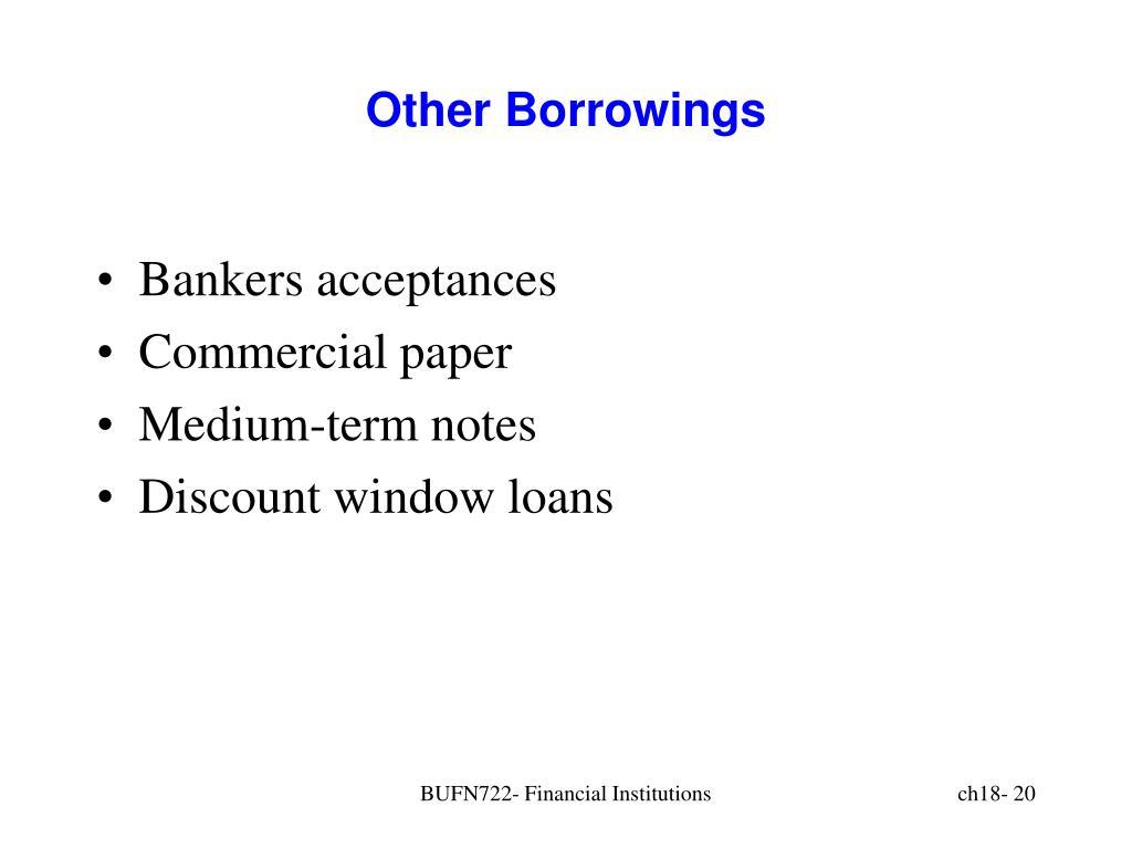 Other Borrowings