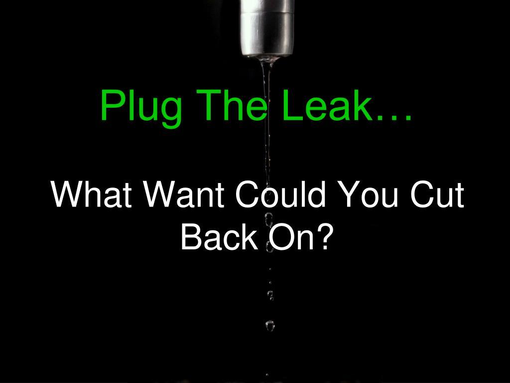 Plug The Leak…