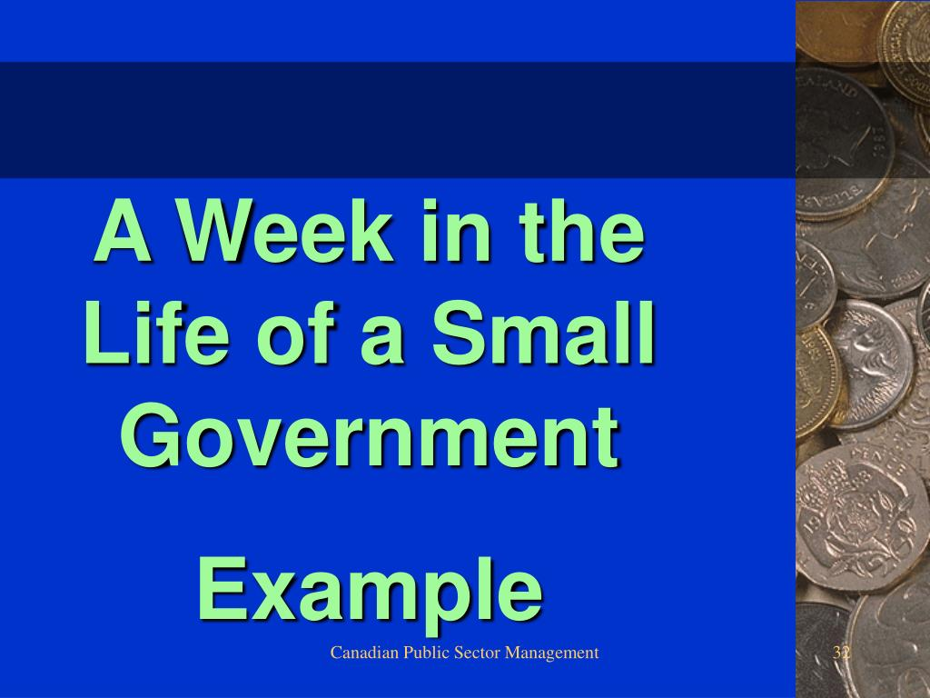 A Week in the Life of a Small Government