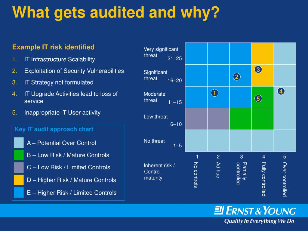 What gets audited and why?