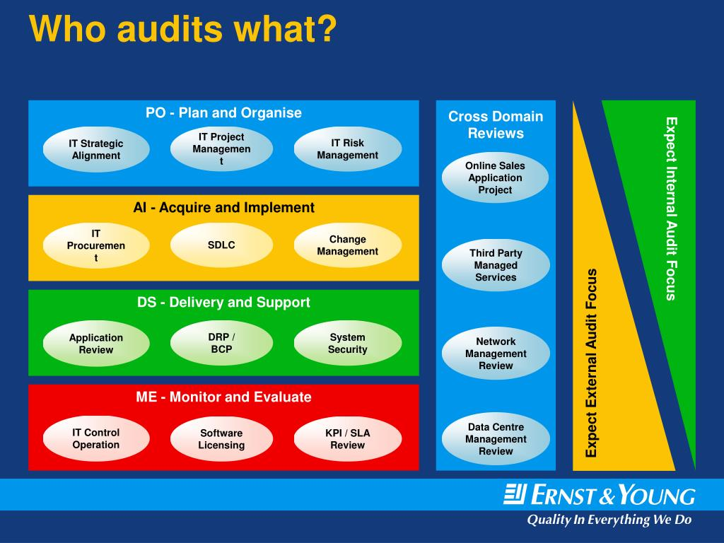 Who audits what?