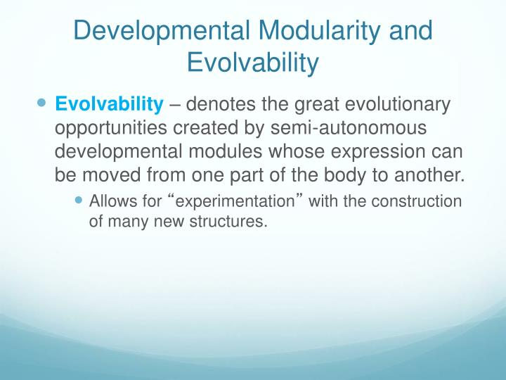 Developmental Modularity and Evolvability