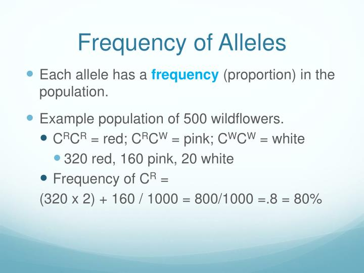 Frequency of Alleles