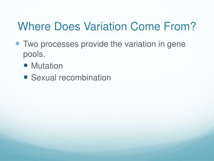 Where Does Variation Come From?