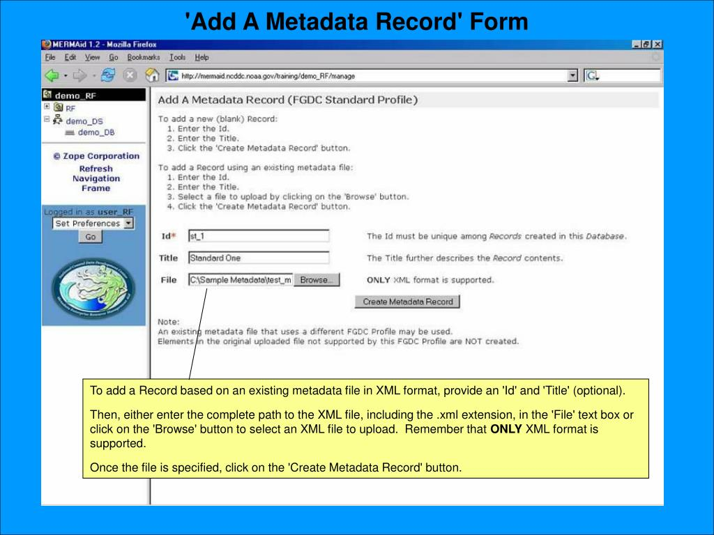 'Add A Metadata Record' Form