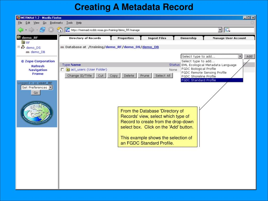 Creating A Metadata Record