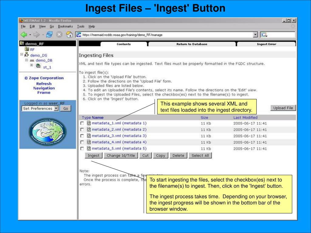 Ingest Files – 'Ingest' Button