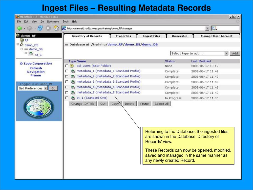 Ingest Files – Resulting Metadata Records
