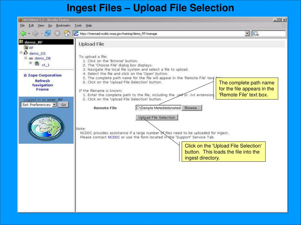 Ingest Files – Upload File Selection