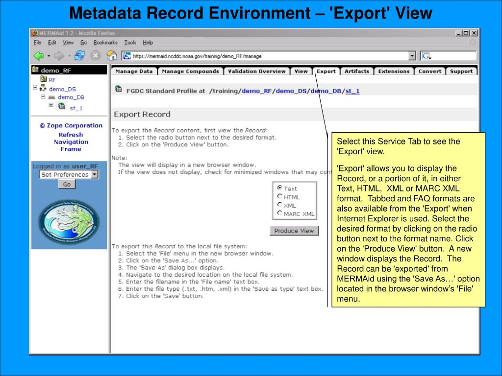 Metadata Record Environment – 'Export' View