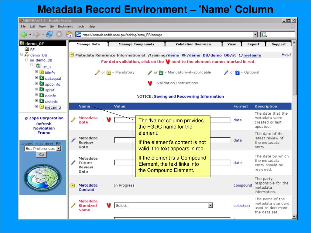 Metadata Record Environment – 'Name' Column