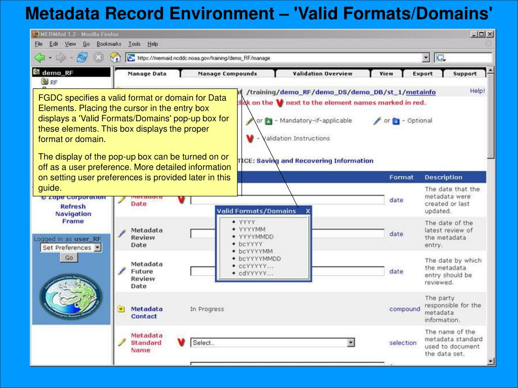 Metadata Record Environment – 'Valid Formats/Domains'