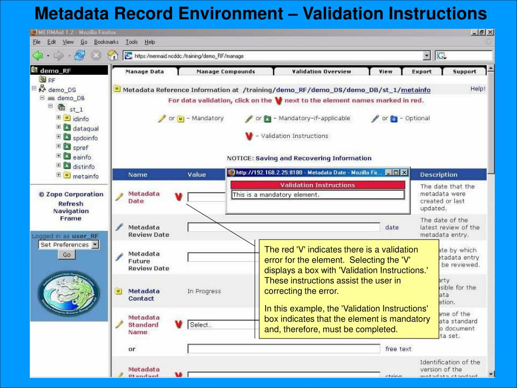 Metadata Record Environment – Validation Instructions