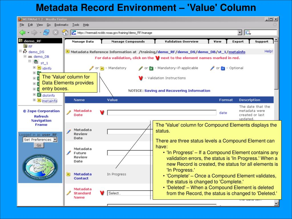 Metadata Record Environment – 'Value' Column