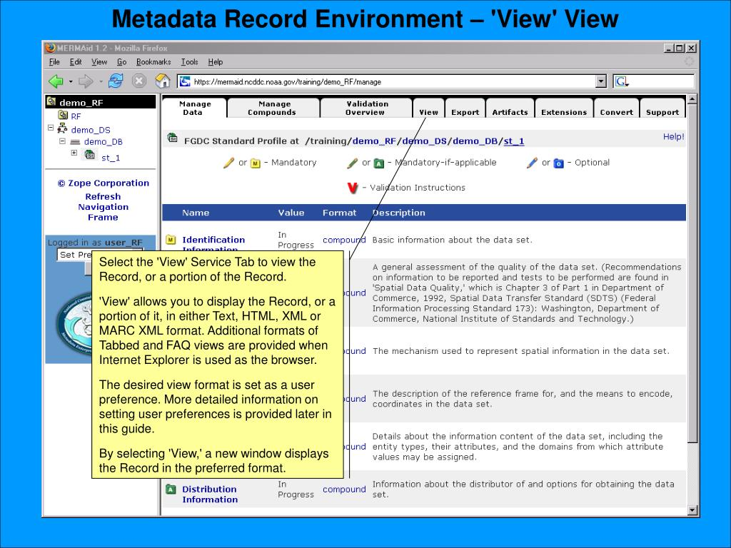 Metadata Record Environment – 'View' View