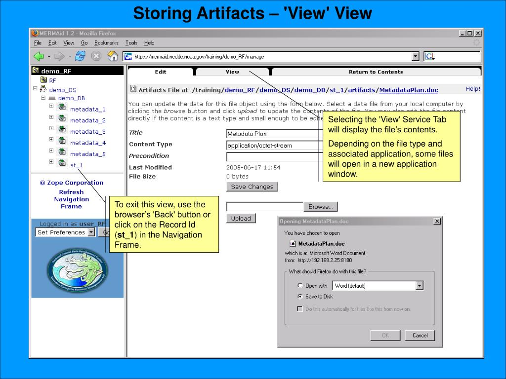 Storing Artifacts – 'View' View