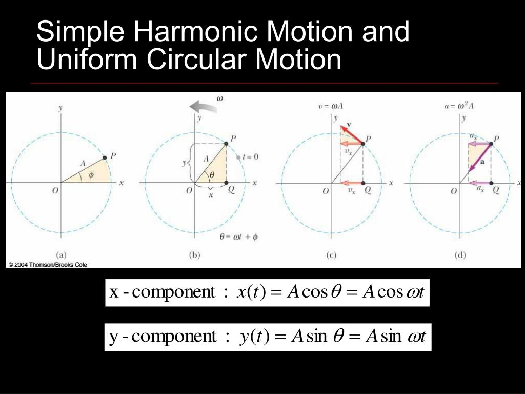 Simple Harmonic Motion and Uniform Circular Motion